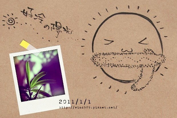 20110101冷陽光01.jpg