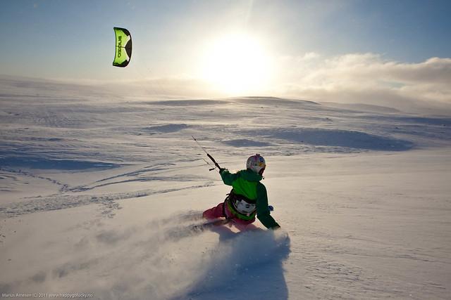 Dyranut, Hardangervidda. Rider: Kari Schibevaag