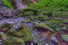 Rakov Skocjan- Rak creek& stone bridge (SLO-D300) Tags: park trip travel bridge tourism nature water beautiful creek forest photoshop wonderful river landscape spring big nice fan