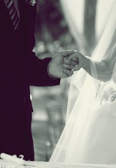 New Beginnings (Its ABEEautiful Life) Tags: weddings holdhands