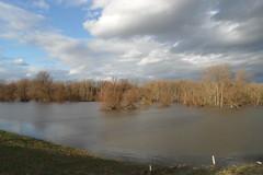Rheinhochwasser Bonn 08.01.11 (JKB MEX) Tags: germany deutschland wasser bonn flood ufer rhine rhein hochwasser pegel flut riverrhine schneeschmelze wassermasssen meltinsnow