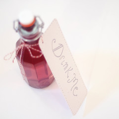 A Gift (baby, picture this) Tags: pink bottle drink homemade gift vodka