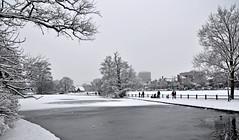 Bevroren Fonteinvijver (Petfles) Tags: park winter snow holland ice netherlands frozen nikon bevroren sneeuw arnhem nederland 2010 vijver sonsbeek gelderland d90 sonsbeekpark petfles fonteinvijver