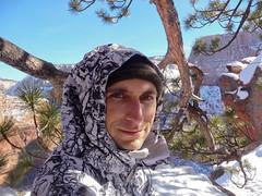 Zion in Winter