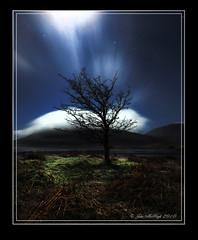 Bush at Night. (J.McHugh) Tags: cloud galway night canon bush connemara cameraclub canon450d irelandwest galwaycameraclub