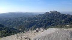 View of Hollywood sign from top of Mt Hollywood