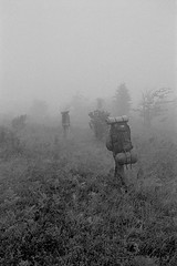 The Allure Of Wandering, Dolly Sods Wilderness, West Virginia (Gerald L. Campbell) Tags: blackandwhite bw fog blackwhite tmax hiking scene backpacking westvirginia wilderness wandering olympusom2n dollysodswilderness scenicphotography 50mmzuikolens 4tografie minoltamultiproscanner