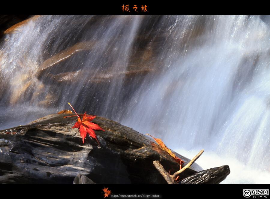 楓之旅(風景篇)