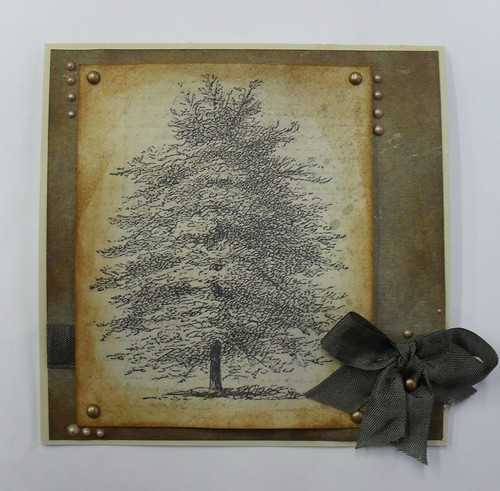 z drzewem