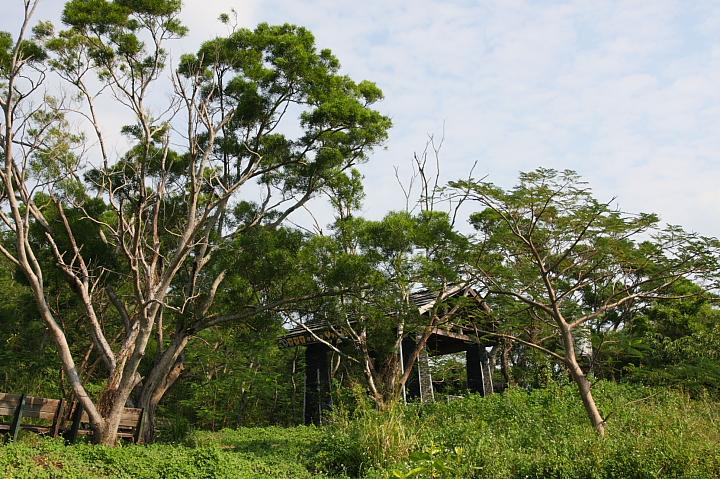 四重溪溫泉公園007