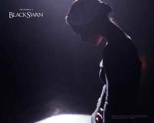 The Black Swan Movie Wallpaper. Black Swan Movie Wallpaper