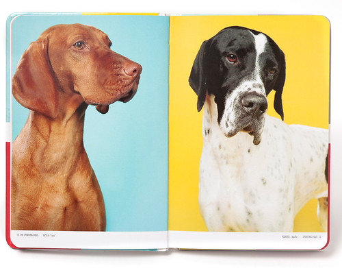 A Photographic Breed Guide