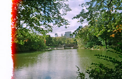 Central Park, New York (vivoandando) Tags: park newyork film america us lomo lomography experimental united central states filme expired vivitar negativo pn lomografia vencido lomographyfilmiso400