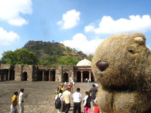 Wombat at Daulatabad Fort