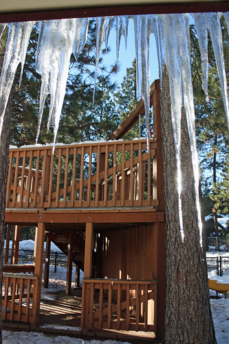 Shining icicles