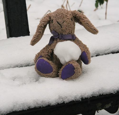 Buttons' Snowball