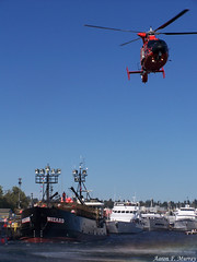 Hover (A. F. Murray) Tags: seattle coastguard water port boats coast boat us washington state angeles yacht wizard guard keith terminal helicopter captain catch fishermans monte federal hover fv uscoastguard colburn deadliest fishermansfallfestival
