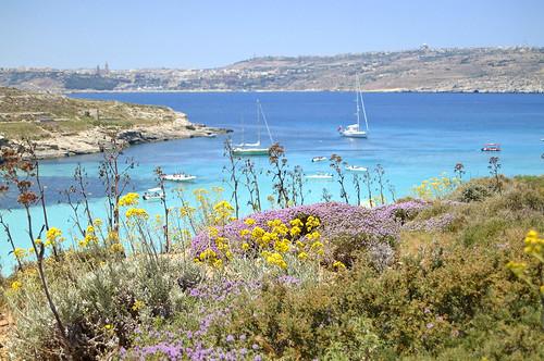 Barca Malta Vacanze