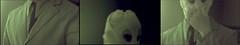 dilogos de diseo. (No para Innita) Tags: portrait woman art face female glasses photo vegan mujer artist foto chica vampire retrato no alien cara lips labios gafas biology rostro artista lorenna biologist snchez extraterrestre biologa femenine cnemidophorus biloga parthenogenesis noparainnita veganvampire partenogenesis exsanguis partenognesis sextraterrestre