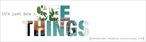 blog banner summer {2010}