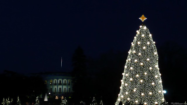 White House and National Christmas Tree