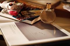 Santa's Stash (grigorisgirl) Tags: 50mm books christmaspresents landscapephotographeroftheyear cupcakesocks esteelaudersensuous theatrevouchers cowclockworktorch thetimeswaterwaysofbritain