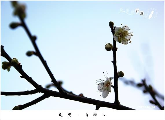 IMG_5022
