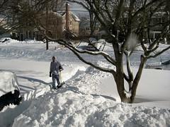 Snow Path (aka Buddy) Tags: winter holiday snow storm newjersey nj og monmouthcounty blizzard 2010 shresbury