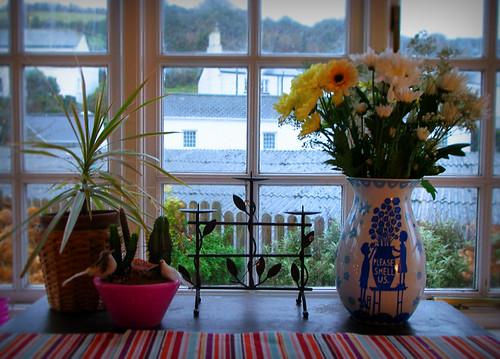 Day 218 - New Vase