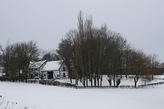 De witte boerderij