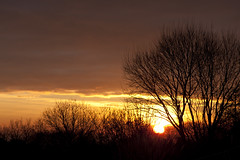 Winter Sunset (Malcolm Alce-King) Tags: sunset wales carmarthenshire wfc pontyberem cfw gwendraethvalley
