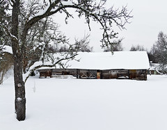 Going to the Farm again (MadisPhoto) Tags: weather estonia day snowy ilm lumi hiiumaa eesti estland lumine talu dag vanagram madisphotocom httpmadisphotocom wwwfacebookcomrealmadisphoto