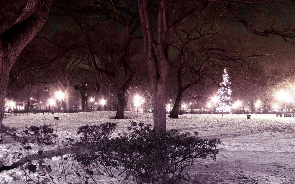 Tompkins Snow