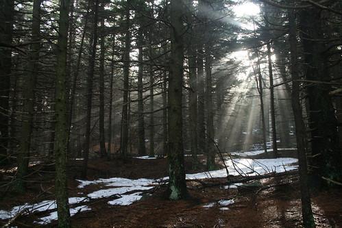 January Hike