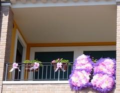 Femmina ! ! ! (Luigi Strano) Tags: italy europa europe italia verona balconies veneto balconi arcole