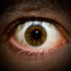 IMG_3054 (dirk hinz) Tags: macro eye eyes augen auge dirk hinz dirkhinz