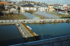 中央線から見える釣り堀