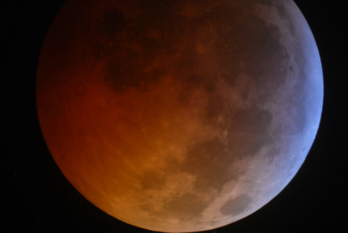 lunar eclipse photo - 12.21.10