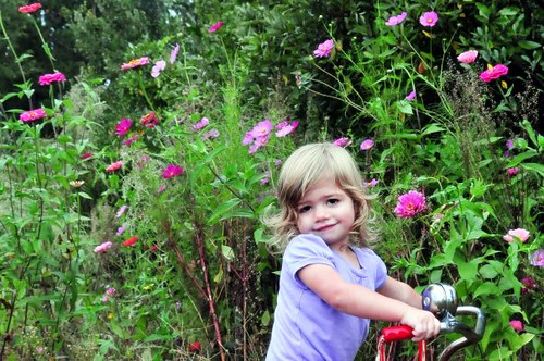 kenna in the zinnias