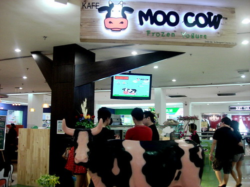 moo cow frozen yogurt-7