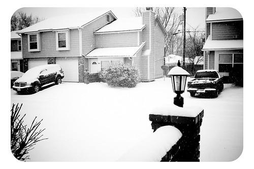 Snow Day - 1/10/2011