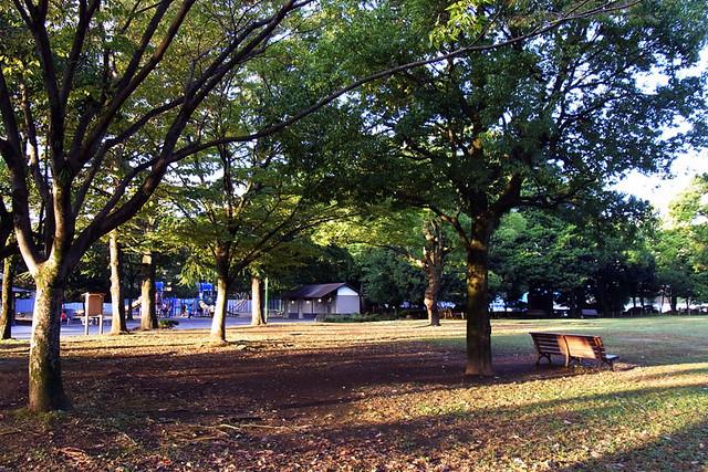 100926_061520_静岡_駿府城