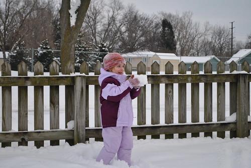 snowfall jan 2011 039
