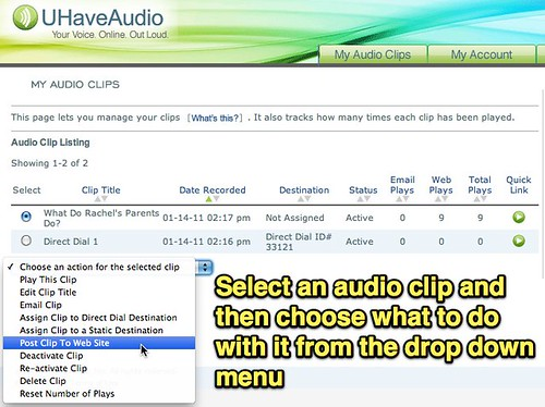 UHaveAudio Options