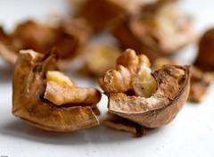 2039.  In pieces (Di's Eyes) Tags: broken pieces walnut nut odt macromondays