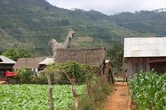 Chicken village, Vietnam (sensaos) Tags: ca chicken 2004 statue rural concrete countryside asia village traditional vietnam lan local con azie azië chickenvillage sensaos lanconca