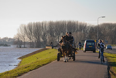 Crowds (sillie_R) Tags: horse car bike river dike waal waaldijk