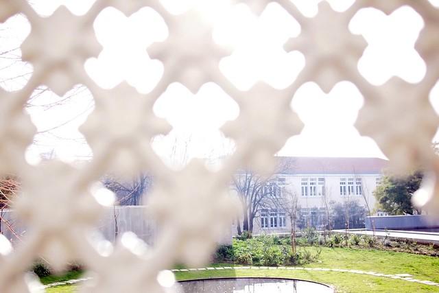 Lisbon lattice