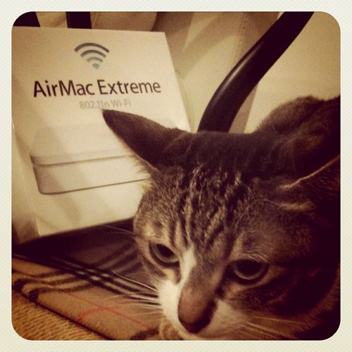 AirMacExtreamきたー!