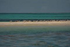 Mozambique-4434